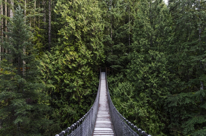 How law firms can take advantage of evergreen content